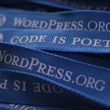 New WordPress courses confirmed in Dublin
