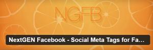 nextgen-facebook-social-meta-tags-for-facebook-google-pinterest-twitter-more