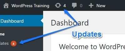 WordPress Updates Tutorial
