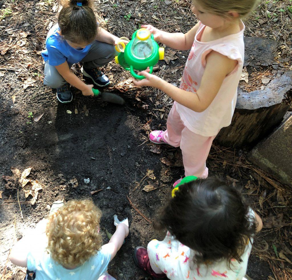 Nature Preschool Definition And Movement Kreher Preserve