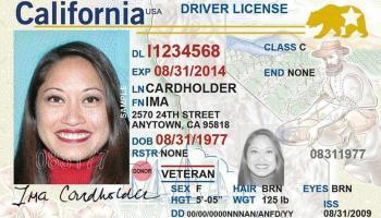 Licencia Real ID – Plazo mayo 2023