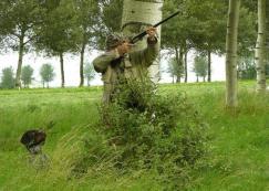 johan jagend duiven