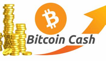Bitcoin Cash – Precio Bitcoin Cash/ top 20 Criptomonedas