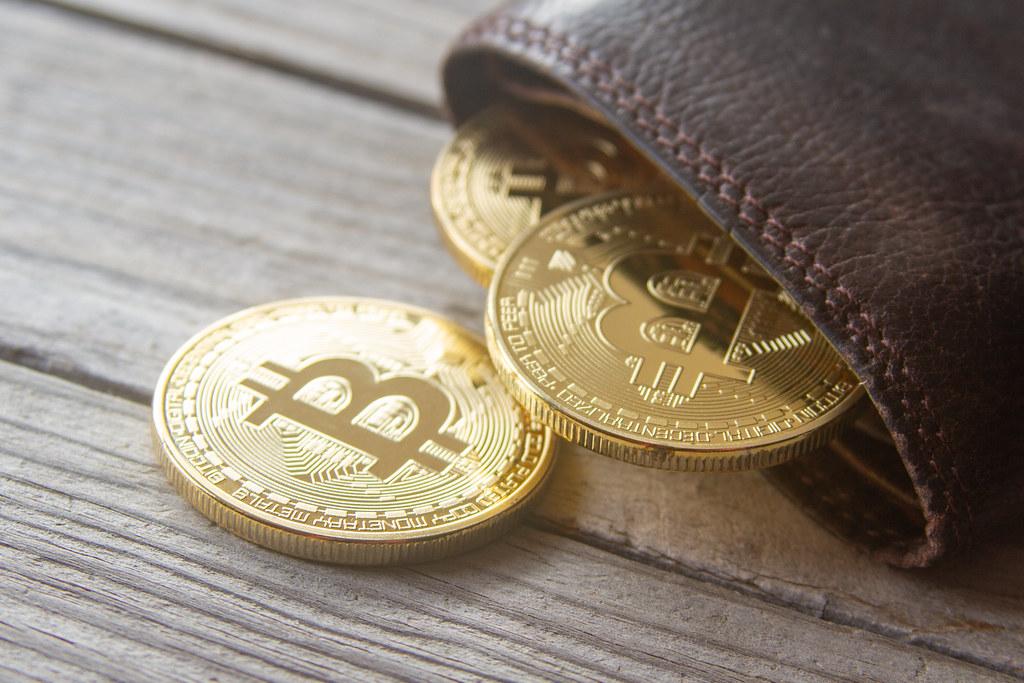 ¿Cómo recuperar Bitcoins si perdí la contraseña del monedero? – La «salvadora» semilla de 12 palabras