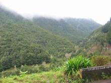 Madeira_03