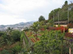 Madeira_11
