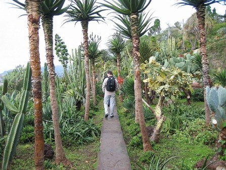 Madeira_13
