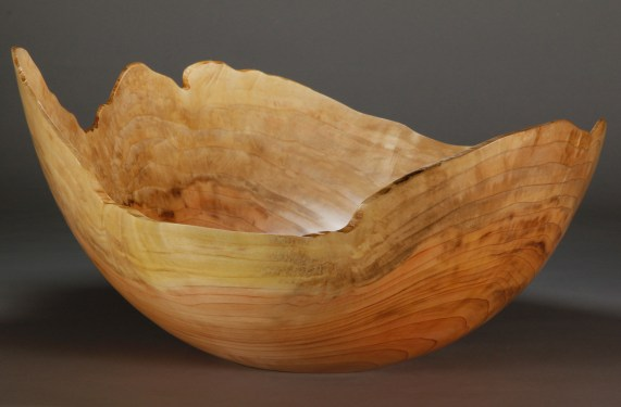 """A 9. Dawn Redwood. 19"""" x 17"""" dia. x 10"""" tall Unbelievably light and fragile. $600"""