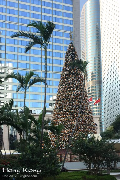 "Ah, Hong Kong, with towering palm trees beside the Christmas tree, in the shadow of some of the tallest ""towers"" in the world!"