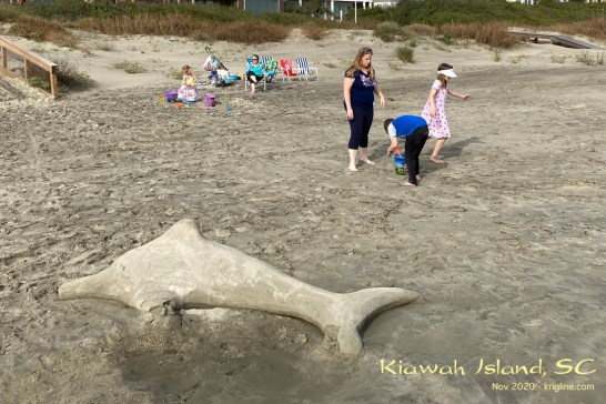Michael's sister and her family gathered recently on Kiawah Island, so we drove down for the afternoon. We had a lot of fun, but didn't take many photos! (And no, we didn't create the sand-dolphin.)