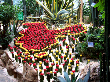 The International Horticultural Expo in the NE part of the city. This is huge indoor and outdoor complex featuring flowers and plants, but it also has outdoor exhibits representing each of China's provinces, as well as an international area with exhibits representative of many nations. We thoroughly enjoyed our first visit, and returned a few times with visitors.