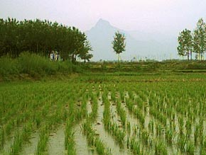 In Sept 2003, we ventured to the countryside, where farmers still work to keep Xi'an's population fed.