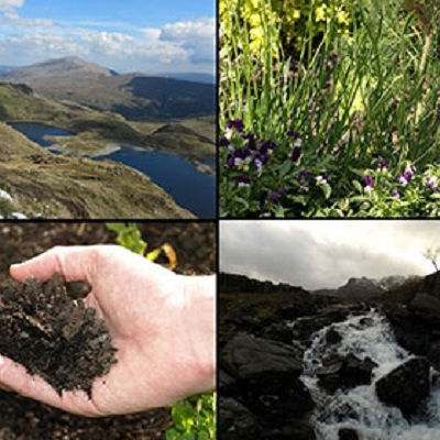 Growing your cake and eating it a model-based investigation of trade-offs in biodiversity and potential ecosystem service supply across Britain