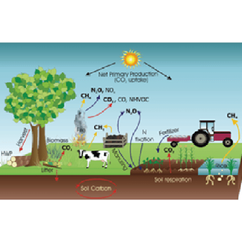 Reducing Agricultural Greenhouse Gas Emissions 'RAGGE'