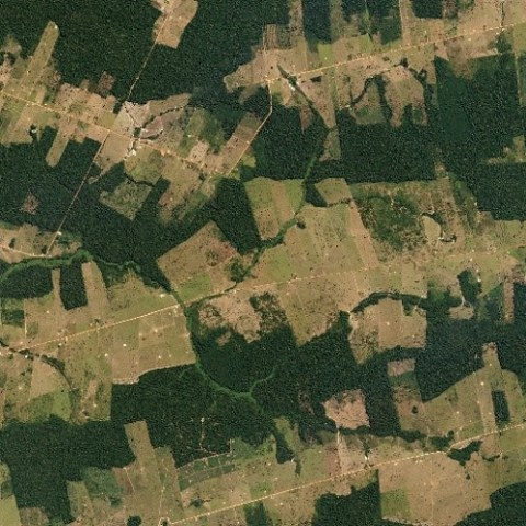 Country, calypso or carimbó? The role of cultural value shifts in advancing Amazonian deforestation frontiers