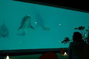 社会実験カフェ〜Phantom〜@おたる水族館の様子 その3