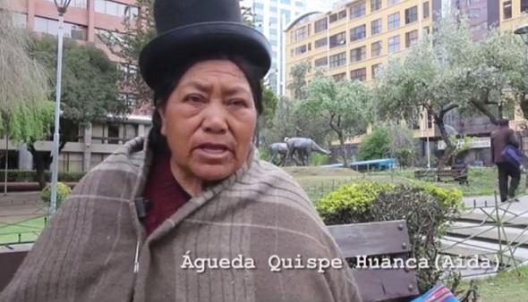 Promotores Culturales Aymaras