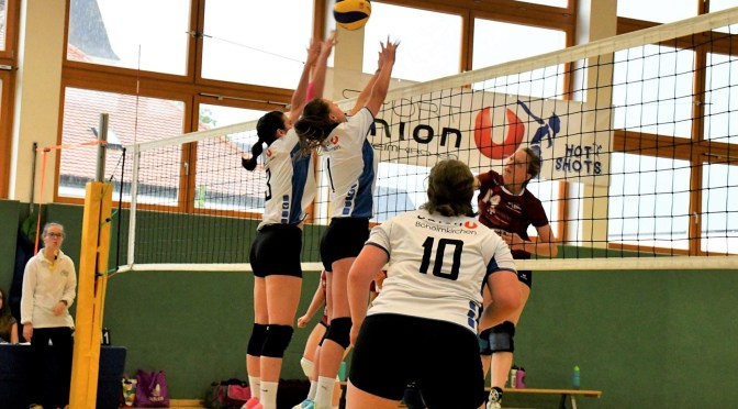 11teamsports 1. NÖ LL Damen / Böheimkirchen : Südstadt