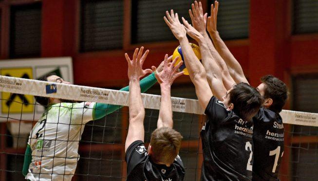 Volley League Men / Waldviertel schlägt zurück