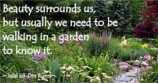 Image result for Beauty surrounds us; but usually we need to be walking in a garden to know it.