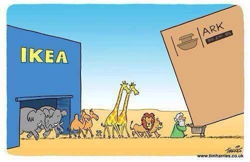 Image result for Noah Building His Ark Cartoon