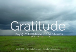 gratitude day 9