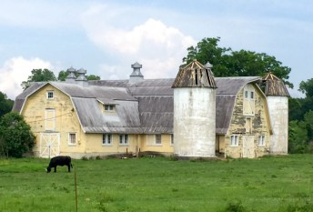 The historic barn at Grand Coteau: a cathedral for cows.