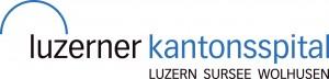 logo_luks
