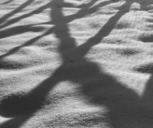 2016-02: Endlich Schnee!