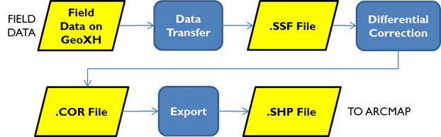 Data Collection Process (roughly) – Information Technology