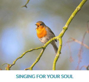 """A picture of a bird singing with the caption """"Singing for Your Soul"""""""