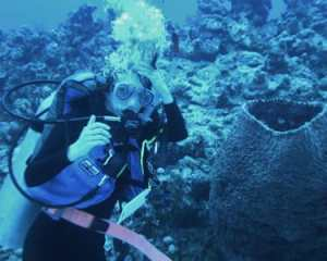 Brooke Weigel '13 conducts sponge research in the Bahamas this January as part of the college's Island Biology program.