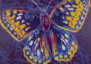 WarholButterfly350x351