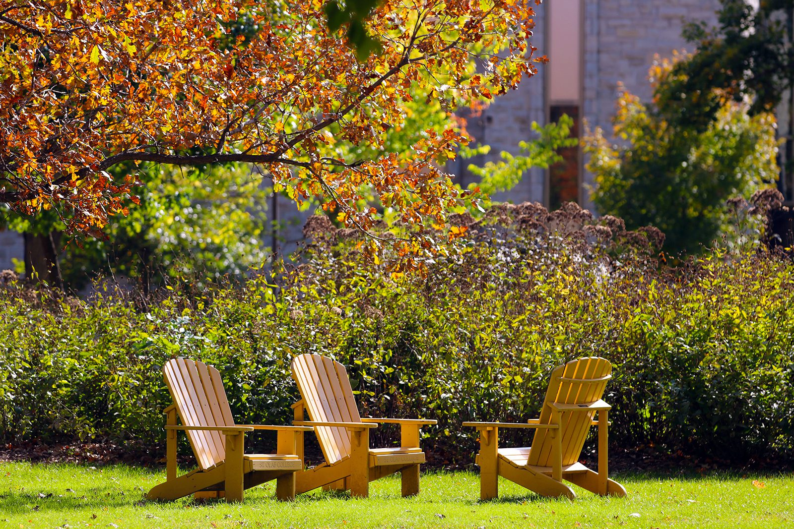 The signature St. Olaf Adirondack chairs on a warm fall day.