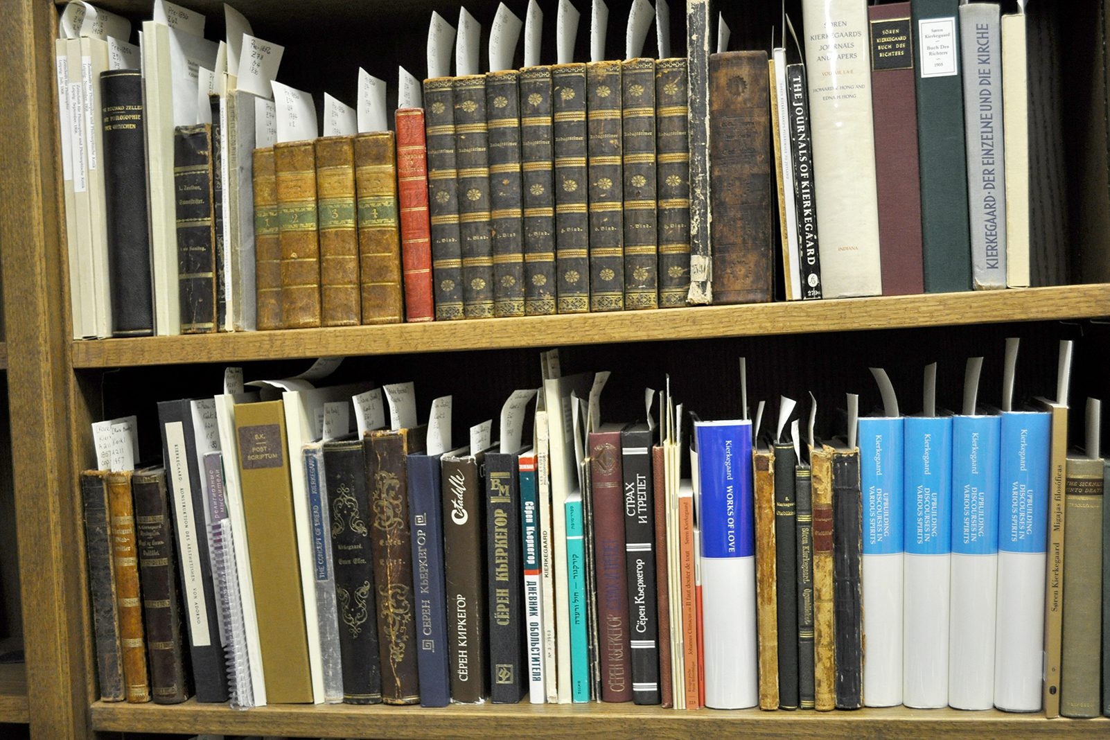 A shelf in the Hong Kierkegaard Library featuring works by and concerning the writings of 19th-century Danish philosopher Søren Kierkegaard.