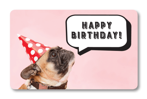 Birthday Dog: Gift Card Front