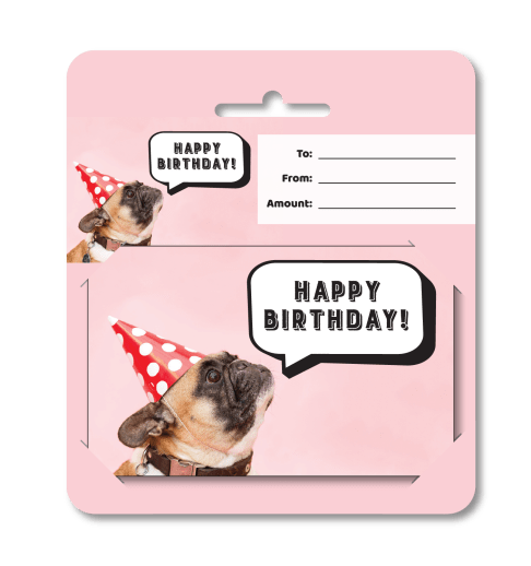 Birthday Gift Dog Hanging Carrier