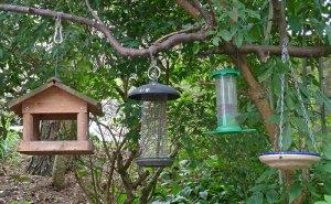 Vogelfutter kann man in Häuschen, Silos und anderem Zubehör reichen, © Tim Green via Flickr