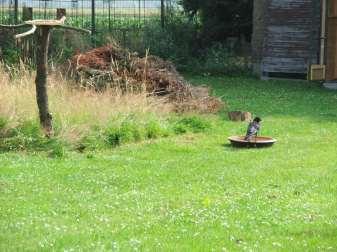 Nicht nur im Hochsommer sind Wasserstellen und Vogeltränken in einem vogelfreundlichen Garten wichtig, © Dagmar Offermann