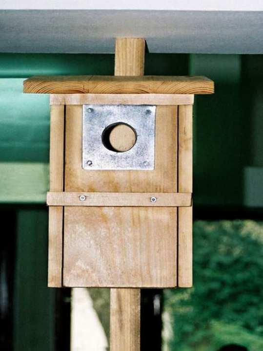Selbst gebauter Nistkasten für Stare, © Dagmar Offermann