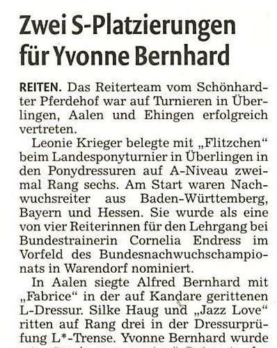 11 - Remszeitung vom 25.07.2015