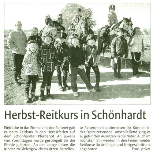 Remszeitung vom 08.11.2011
