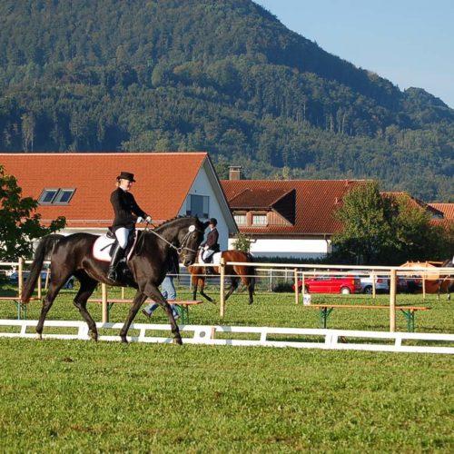 Reitturnier Waldstetten_ 17.09.2010 08-44-42