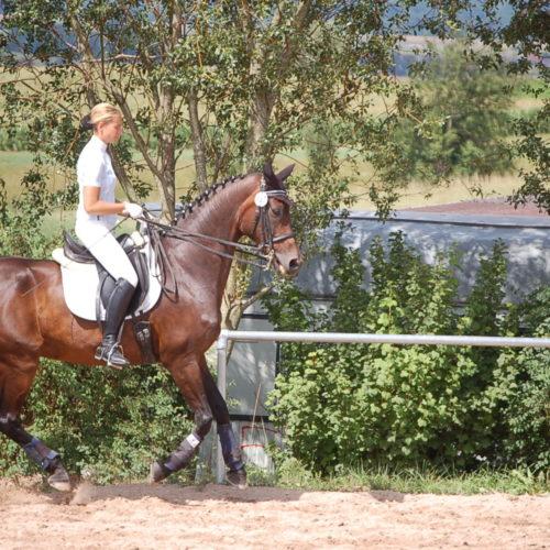 Reitturnier_Jagstzell_2010_ 30.07.2010 14-31-32