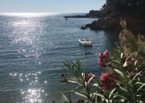 moving to Mallorca - your man in Mallorca