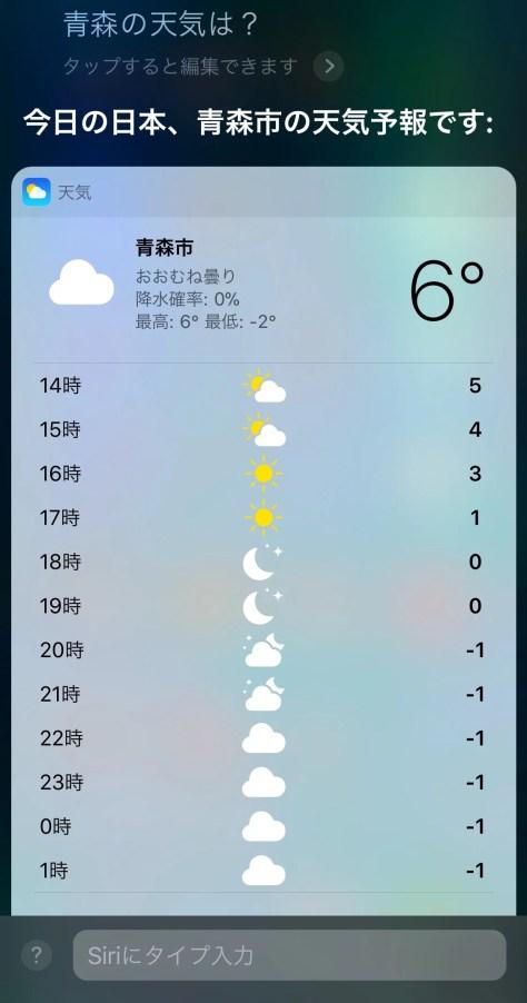 Siriの結果画面