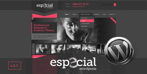 Especial - Business & Portfolio WordPress Theme