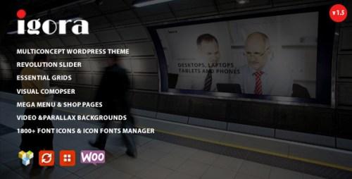 Igora - Multi Concept WordPress Theme