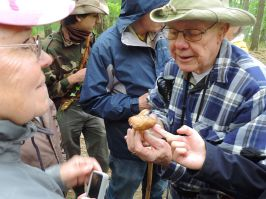 Dick Dougall identifying a specimen. By Adam Haritan