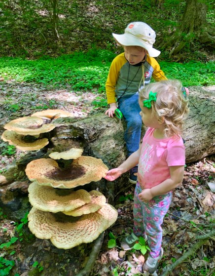 Fluff Berger, Dryad's Saddle (Family Participation Finalist)